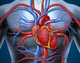 directorio medico de cancun cardiologo cardiologia cardiologia the clinics of the heart rafael moguel infartos arritmias