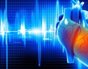directorio medico de cancun cardio centro cardiologia electrocardiograma prueba de esfuerzo MAPA holter check up cardiovascular farmacia cardiologo cancun