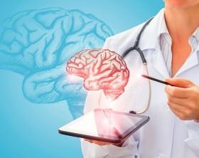 neuropsicologia directorio medico de cancun psicologo psicologia